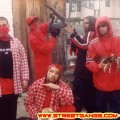 bloods2_o