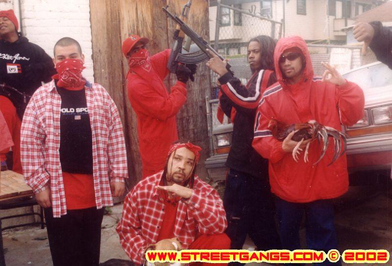 BLOOD HOUND: Started gangbangin' at age 10 | StreetGangs Com