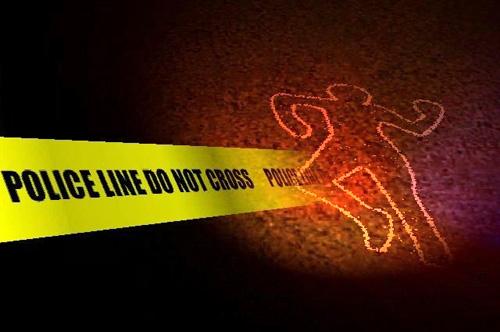 the-homicide-report