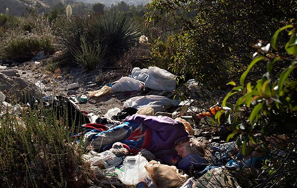 Tujunga Wash homeless