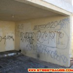 204th Street gang graffiti, 2007