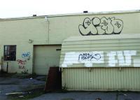 dead cat alley