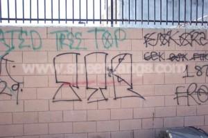 Tree Top Piru graffiti in Compton, CA