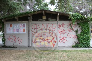 Van Ness Gangster Blood graffiti at Chesterfield Park on 54th Street, May 2013