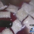Pasadena drug trafficking raid