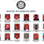 rollin 30s harlem crips gang arrested