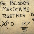 """Crips, Bloods, Mexicans Together"""